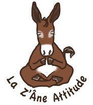 LA Z'ANE ATTITUDE